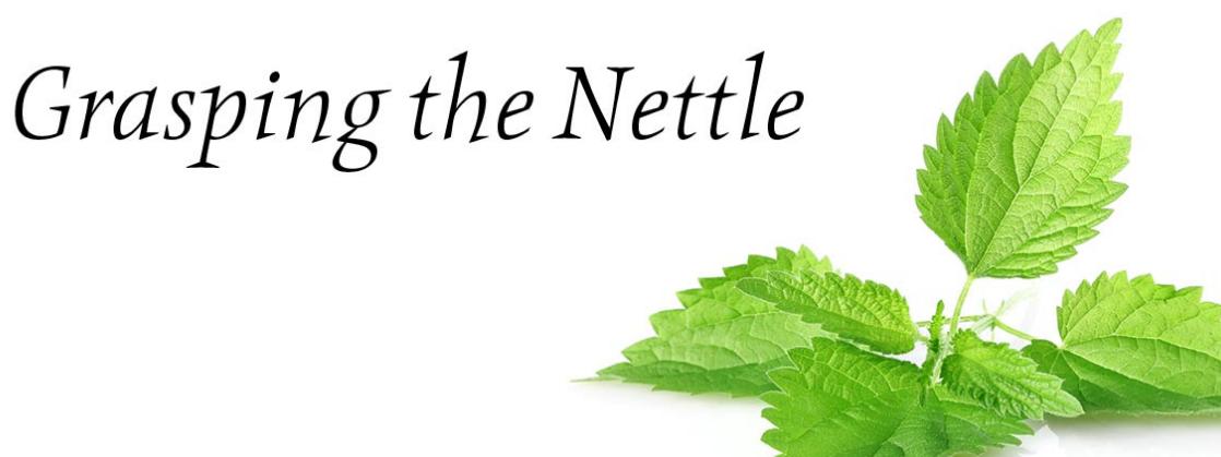 grasping-the-nettle