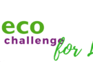 Eco-Challenge for Lent
