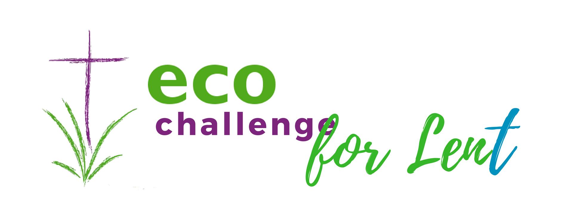 Eco-Challenge for Lent