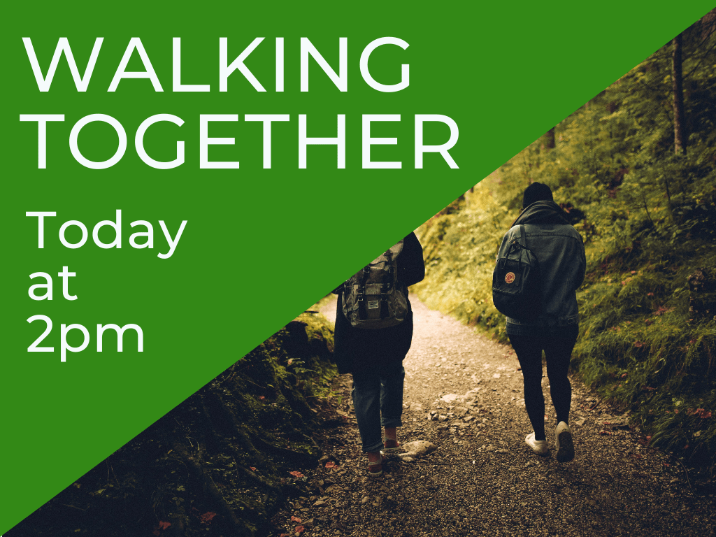 Copy of Walking Together